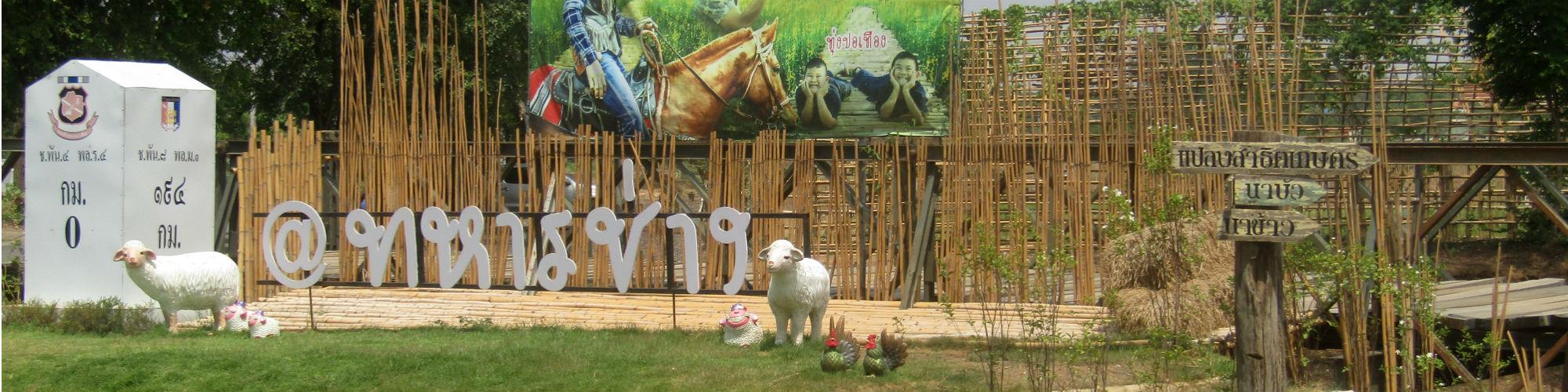 Engineer Sheep Farm, Klang Daet, Mueang Nakhon Sawan District, Nakhon Sawan Province